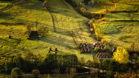 As montanhas Carpathian selvagens de Romênia no tempo do outono ajardinam Foto de Stock Royalty Free