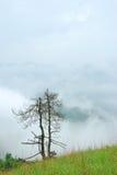 As montanhas da cor da névoa Fotografia de Stock Royalty Free