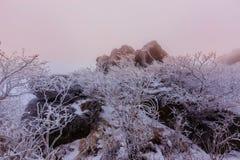 As montanhas de Deogyusan são cobertas pela neve Fotografia de Stock