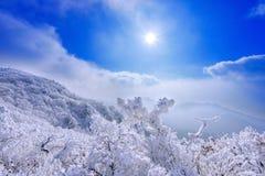 As montanhas de Deogyusan são cobertas pela neve e pela névoa da manhã no inverno imagens de stock royalty free