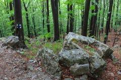 As montanhas de Mehedinti, Romania Fotos de Stock Royalty Free