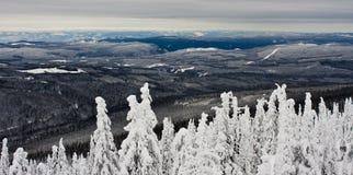 As montanhas de Monashee do branco grande, BC Foto de Stock