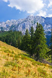 As montanhas de pedra do príncipe Foto de Stock Royalty Free