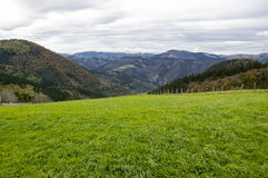 As montanhas de Vascos Foto de Stock