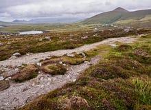 As montanhas do Dingle em um dia ventoso Imagens de Stock