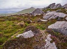 As montanhas do Dingle em um dia ventoso Foto de Stock