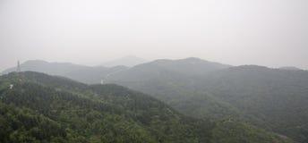 As montanhas e a floresta Foto de Stock