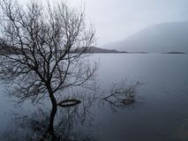 As montanhas escocesas Fotos de Stock Royalty Free