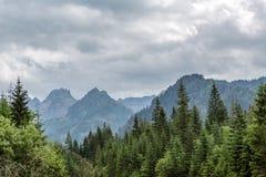 As montanhas inspiradores ajardinam, dia nebuloso no verão Tatras Foto de Stock Royalty Free