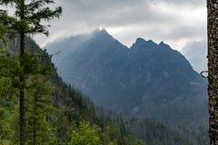 As montanhas inspiradores ajardinam, dia nebuloso no verão Tatras Fotos de Stock Royalty Free