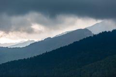 As montanhas inspiradores ajardinam, dia nebuloso no verão Tatras Imagem de Stock