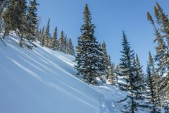 As montanhas misteriosas da paisagem do inverno em árvores do inverno cobriram a neve Imagens de Stock Royalty Free