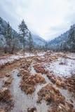 As montanhas no inverno Foto de Stock