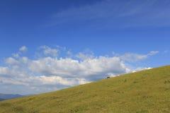 As montanhas ucrânia Fotos de Stock