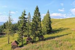 As montanhas ucrânia Imagem de Stock