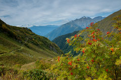 As montanhas verdes do Cáucaso norte Foto de Stock Royalty Free