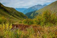 As montanhas verdes do Cáucaso norte Imagem de Stock
