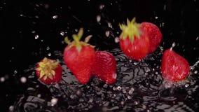 As morangos maduras caem na tabela video estoque