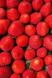 As morangos orgânicas maduras do verão do teste padrão do alimento na caixa de cartão no ` s do fazendeiro introduzem no mercado  Fotografia de Stock
