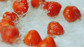 As morangos vermelhas frescas caem na água vídeos de arquivo