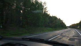 As movimentações do carro ao longo da estrada de floresta vídeos de arquivo