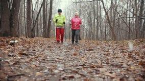 As mulheres adultas superiores no parque do outono têm o treinamento - nordic que anda durante a primeira neve filme
