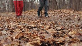 As mulheres adultas superiores no parque do outono têm o treinamento - nordic que anda durante a primeira neve - slider vídeos de arquivo