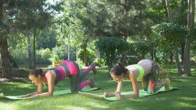 As mulheres aptas que fazem a prancha aumentada do pé exercitam ourtdoors filme