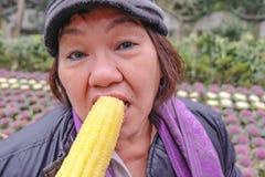 As mulheres asiáticas idosas felizes comem o milho saboroso com a cara deliciosa na porcelana de hangzhou do parque do lago do xi imagens de stock