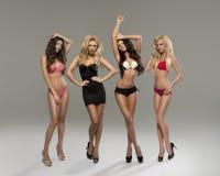 As mulheres bonitas no crescimento completo levantam na frente da câmara em l Fotografia de Stock