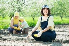 As mulheres com criança trabalham no jardim de vegetais Imagens de Stock Royalty Free