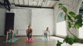 As mulheres delgadas novas estão tendo a classe da ioga da manhã que faz o complexo da saudação do sol em esteiras brilhantes no  vídeos de arquivo