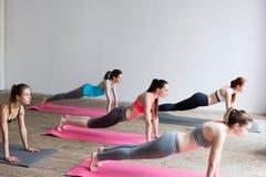 As mulheres do grupo no assoalho dos esportes fazer do gym que empurra levantam fotos de stock