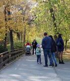 As mulheres e as crianças dos homens andam em um parque bonito no verão 2018 de Novosibirsk do parque de Kirov do outono imagem de stock
