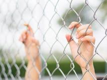 As mulheres entregam guardar a cerca no cenário exterior durante a luz do dia Imagens de Stock Royalty Free