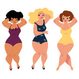 As mulheres gordas, curvy, meninas, mais o tamanho modelam em ternos de natação ilustração royalty free