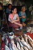 As mulheres introduzem no mercado em India Foto de Stock Royalty Free