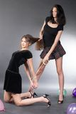 As mulheres novas discutem Imagem de Stock Royalty Free