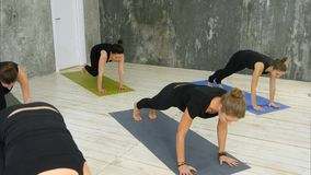 As mulheres que fazem a saudação do sol da ioga levantam dentro no estúdio da ioga foto de stock