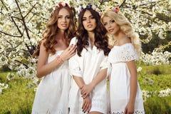 As mulheres sensuais lindos com cabelo luxuoso no vestido elegante que levanta na flor jardinam Fotografia de Stock Royalty Free