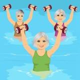 As mulheres superiores que fazem o gym do aqua exercitam com pesos na piscina ilustração royalty free