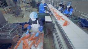 As mulheres trabalham em uma planta com faixa de peixes, fecham-se acima filme
