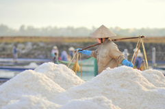 As mulheres vietnamianas estão carregando duramente para recolher o sal dos campos do extrato aos campos do armazenamento Foto de Stock Royalty Free