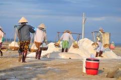 As mulheres vietnamianas estão carregando duramente para recolher o sal dos campos do extrato aos campos do armazenamento Imagens de Stock Royalty Free