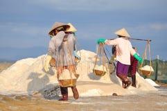 As mulheres vietnamianas estão carregando duramente para recolher o sal dos campos do extrato aos campos do armazenamento Imagem de Stock