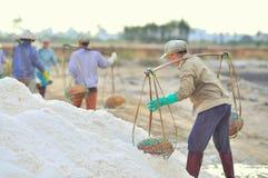 As mulheres vietnamianas estão carregando duramente para recolher o sal dos campos do extrato aos campos do armazenamento Fotografia de Stock Royalty Free