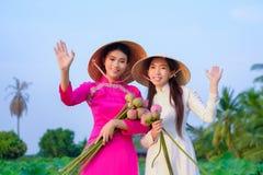As mulheres vietnamianas est?o recolhendo os l?tus imagem de stock royalty free