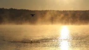 As nadadas desportivos do homem rastejam em um lago dourado Um zangão está voando no slo-mo video estoque
