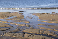 As naturezas lixam a cinzeladura Foto de Stock Royalty Free