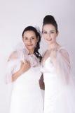 As noivas lindos vestem o sorriso branco dos vestidos de casamento Fotos de Stock Royalty Free